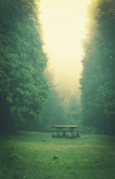 Одиночество и общение