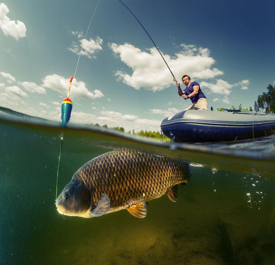 Искусство рыбной ловли