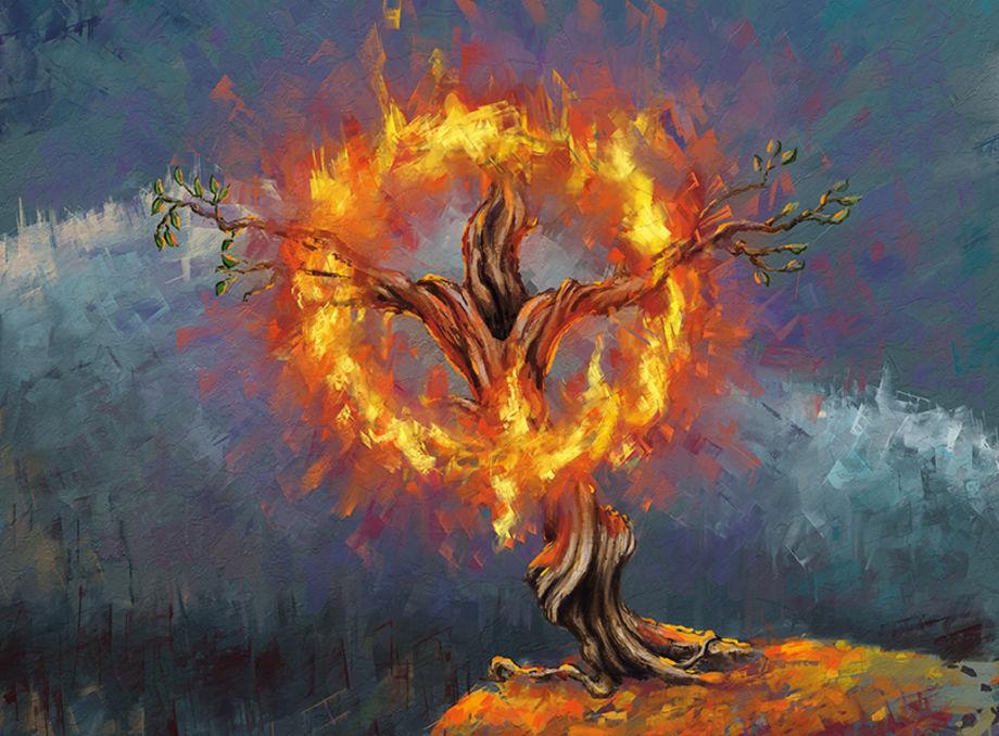 Куст купины горит живым огнем